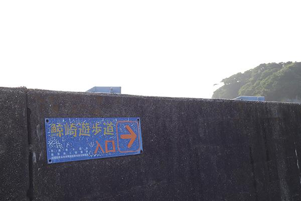 うえ久散歩海_003