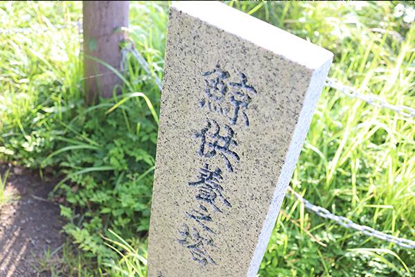 うえ久散歩海_008